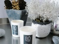 Bôrivage Home Fragrance