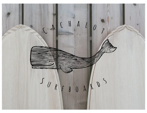 Cachalot Surfboards